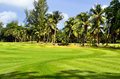 Golf field at tropical island praslin seychelles Royalty Free Stock Images