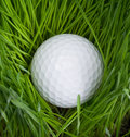 Golf Iron, Ball and Tees Royalty Free Stock Photo