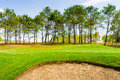 Golf place with gorgeous green and sand bunker Royalty Free Stock Image
