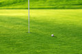 Golf putting green Stock Images
