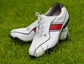 Golf shoes Stock Photos