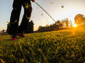 Golf short game around the green example of using a wedge iron club close up low angle view sunset Stock Image