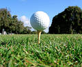 Golf Tee Shot Royalty Free Stock Photo