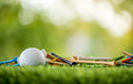 Golf tees with ball Royalty Free Stock Photo