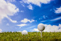 Golf theme summer sports colorful concept with grass Stock Images
