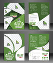 Golf tournament flyer set of front back template Royalty Free Stock Photography