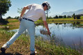 Golf water hazard lost ball in golfer looking in reeds Stock Image