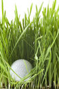 Golfball Royalty Free Stock Photo