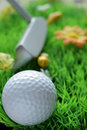 Golfball and club on artificial grass Stock Image