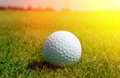 Golfball in grass golf ball close up Stock Photography