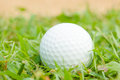 Golfball on grass infront of the green Royalty Free Stock Image