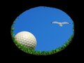 Golfball mit Seemöwe Stockbilder