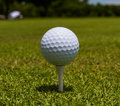 Golfball stand tee Royalty Free Stock Photo