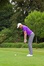 Golfer addressing the ball Royalty Free Stock Photo