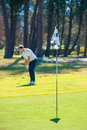 Golfer playing a chip shot onto the green Royalty Free Stock Photo