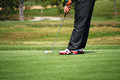 Golfer putting on the green Royalty Free Stock Photo