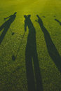 Golfers silhouette on grass silhouettes of with clubs vertical image Royalty Free Stock Photography