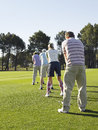 Golfers standing in row teeing off rear view of young on golf course Royalty Free Stock Images