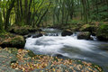 Golitha Falls Bodmin Moor Royalty Free Stock Photo