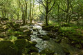 Golitha falls river fowey bodmin moor cornwall england walk towards cornish tourist attraction Stock Photos