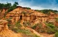 Gongoni grand canyon of west bengal india called gorge red soil Stock Photos