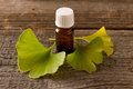 Gonkgo leaves and extract ginkgo essential in a bottle fresh Royalty Free Stock Photos