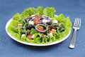 A good greek Salad Royalty Free Stock Photo