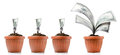 Good investment a series of growing money in the flowerpots Stock Image