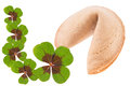 Good luck fortune cookie with clover leaves isolated over a white background Stock Photos