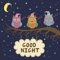 Good night card with cute sleeping owls