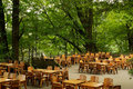 A good place for drinking tea under the green and big trees clean tables and clean chairs have cup of leisurely life Royalty Free Stock Photos