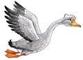goose drawing bird beak flies