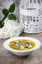 Goose soup festive and party decoration Stock Images