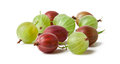 Gooseberry fruit closeup Royalty Free Stock Photo