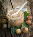 Gooseberry jam Stock Images