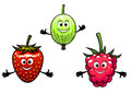 Gooseberry raspberry and strawberry berries in cartoon style Stock Images
