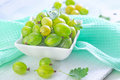 Gooseberry in the white bowl Royalty Free Stock Images