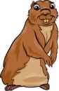 Gopher Animal Cartoon Illustra...
