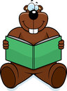 Gopher Reading Royalty Free Stock Photos