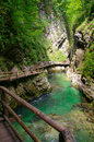 Gorge with a green river and wooden bridges