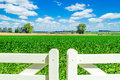 Gorgeous field over white picket fence door. Royalty Free Stock Photo