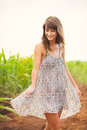 Gorgeous girl in the field summer lifestyle walking happy carefree woman wearing stylish sun dress Royalty Free Stock Images