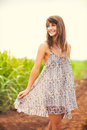 Gorgeous girl walking in the field summer lifestyle happy carefree woman wearing stylish sun dress Stock Image
