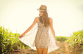Gorgeous girl walking in the field summer lifestyle happy carefree woman wearing stylish sun dress Royalty Free Stock Image