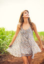 Gorgeous girl walking in the field summer lifestyle happy carefree woman wearing stylish sun dress Royalty Free Stock Photos