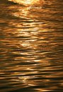 Gorgeous gold color sea water surface with the gentle waves glittering by morning sunlight Royalty Free Stock Photo