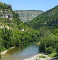 Gorges du tarn lozere linguedoc roussillon france famous canyon at summer Royalty Free Stock Images