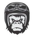 Gorilla Bikers Helmet Royalty Free Stock Photo