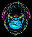 Gorilla with headphones Royalty Free Stock Photo