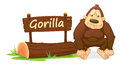 Gorilla and name plate Royalty Free Stock Photo
